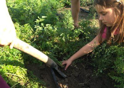 Děti a práce na záhonu
